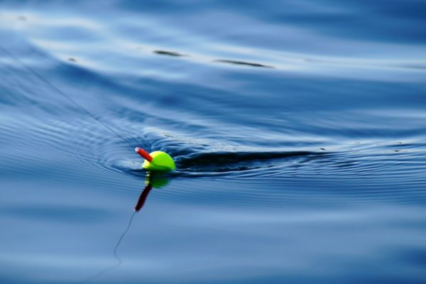Manage Stress - At Work or While Fishing